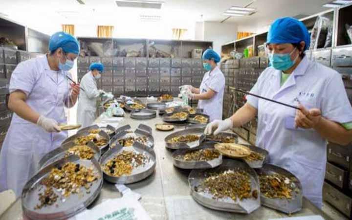চীনে সনাতন ওষুধ দিয়ে করোনা রোগীর চিকিৎসা